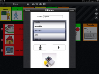 Imagen de la pantalla de creación o edición de vocabulario