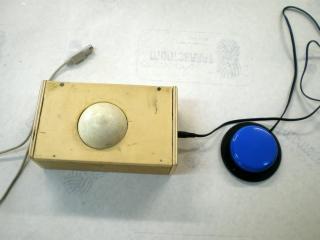 Imagen del ratón de bola grande