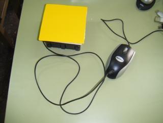 Imagen del ratón adaptado (caja de conexión)
