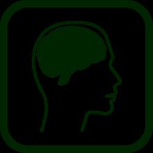 Mental functional diversity icon