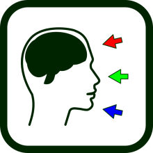 Icono de estimulación cognitiva